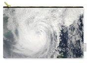 Typhoon Megi Carry-all Pouch