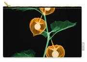 X-ray Of Chinese Lantern Plant Carry-all Pouch