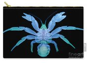 X-ray Of Coconut Crab Carry-all Pouch