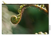 Young Fern In The Morning Sun Carry-all Pouch