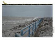 Hurricane Sandy Carry-all Pouch
