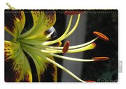 Asiatic Lily Named Black-eyed Cindy Carry-all Pouch