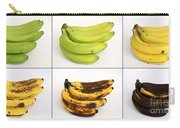 Banana Ripening Sequence Carry-all Pouch