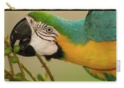 Blue And Yellow Macaw Ara Ararauna Carry-all Pouch