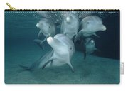 Bottlenose Dolphin Underwater Pair Carry-all Pouch