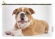 Bulldog Pup Carry-all Pouch