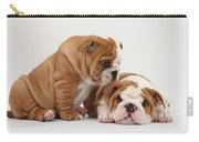 Bulldog Pups Carry-all Pouch