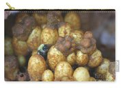 Bumblebee Nest Carry-all Pouch