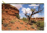 Canyonlands Needles District Carry-all Pouch