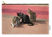 3 Cats Looking Pensive Carry-all Pouch