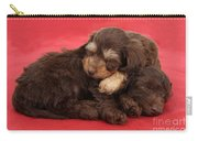 Doxie-doodle Puppies Carry-all Pouch