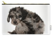 Doxie-doodle Puppy Carry-all Pouch