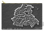 Escherichia Coli O157h7 Bacteria, Sem Carry-all Pouch