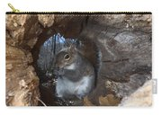 Gray Squirrel Carry-all Pouch by Ted Kinsman