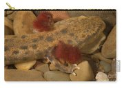 Mudpuppy Carry-all Pouch