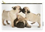 Pug And English Mastiff Puppies Carry-all Pouch by Jane Burton