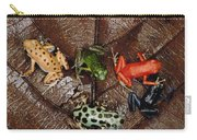 Strawberry Poison Dart Frog Dendrobates Carry-all Pouch