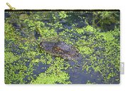31- Alligator Hatchling Carry-all Pouch
