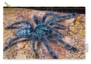 Antilles Pinktoe Tarantula Carry-all Pouch