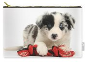 Border Collie Pup Carry-all Pouch