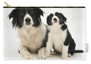 Border Collies Carry-all Pouch