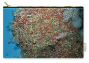 Colourful Reef Scene, Ari And Male Carry-all Pouch