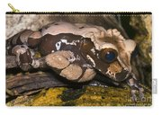 Crowned Tree Frog Carry-all Pouch