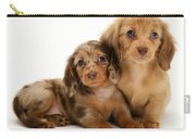 Dachshund Pups Carry-all Pouch