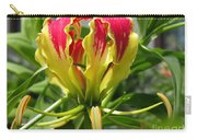 Gloriosa Named Rothschildiana Carry-all Pouch