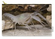 Mclanes Cave Crayfish Carry-all Pouch