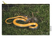 Northern Ringneck Snake Carry-all Pouch
