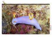 Nudibranch Feeding On Algae, Papua New Carry-all Pouch
