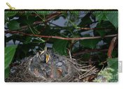 Robin Nestlings Carry-all Pouch