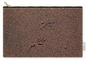 Sandmaps Carry-all Pouch