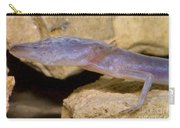Austin Blind Salamander Carry-all Pouch