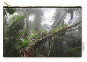Bromeliad Bromeliaceae And Tree Fern Carry-all Pouch
