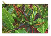 5- Croton Carry-all Pouch