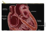 Illustration Of Heart Anatomy Carry-all Pouch by Science Source