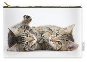 Kitten Companions Carry-all Pouch