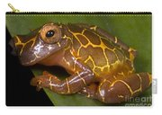Clown Tree Frog Carry-all Pouch