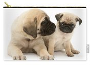 Pug And English Mastiff Puppies Carry-all Pouch
