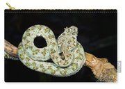 Eyelash Viper Carry-all Pouch