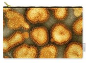 Influenza Virus Carry-all Pouch