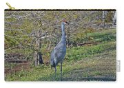 9- Sandhill Crane Carry-all Pouch