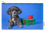 A Dog With Some Gifts Carry-all Pouch