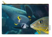 A French Angelfish Swims Up Close Carry-all Pouch
