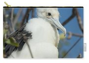 A Frigatebird Sitting In A Nest Carry-all Pouch