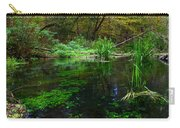 A Hint Of Fall At Ichnetucknee Springs Carry-all Pouch