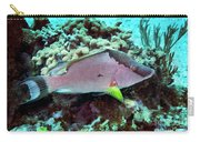 A Hogfish Swimming Above A Coral Reef Carry-all Pouch