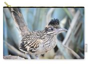 A Juvenile Greater Roadrunner  Carry-all Pouch